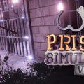 Prison Simulator VR Download Free PC Game Link