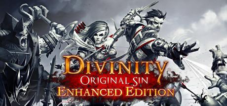 Divinity Original Sin Download Free Enhanced Edition